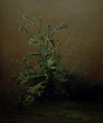 Edouard Manet, Die Distel by AKG  Images