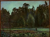 Camille Pissarro, Das Kohlfeld, Pontoise von AKG  Images