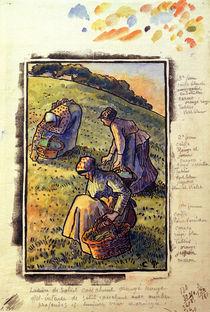 C.Pissarro, Kraeuter suchende Frauen by AKG  Images