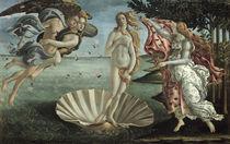 Botticelli, Geburt der Venus by AKG  Images