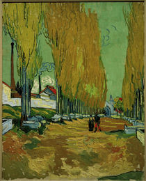 V.van Gogh,Allee des Tombeaux,Alyscamps by AKG  Images