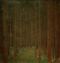 Gustav Klimt, Tannenwald I by AKG  Images