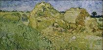 V.v.Gogh, Feld mit Heuschobern by AKG  Images