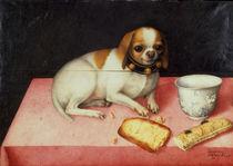 G.Garzoni, Huendchen mit Brotschnitte by AKG  Images