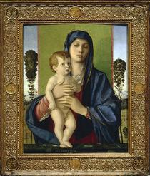 Giovanni Bellini, Madonna mit Baeumchen von AKG  Images