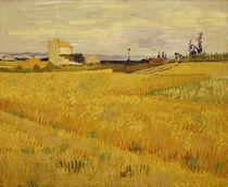 Van Gogh/ Weizenfeld/ Arles, Juni 1888 by AKG  Images