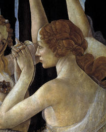 Botticelli, Primavera, Grazie by AKG  Images