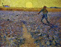 van Gogh, Saemann bei untergehender Sonne von AKG  Images