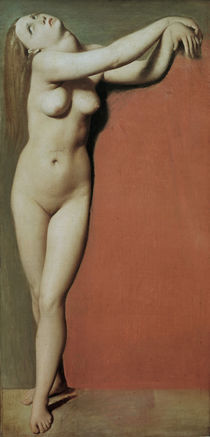 Ingres, Angelica by AKG  Images