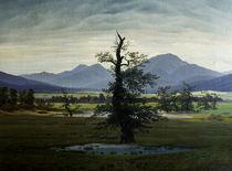 C.D.Friedrich, Einsamer Baum von AKG  Images