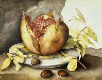 G.Garzoni, Teller mit Granatapfel von AKG  Images