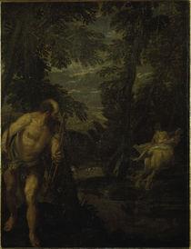 Veronese, Herkules, Dejanira & Nessus by AKG  Images