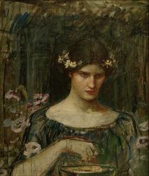 J.W.Waterhouse, Medea / Gemaelde, 1906-7 von AKG  Images