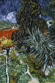 Van Gogh/ Garten von Doktor Gachet/ 1890 by AKG  Images