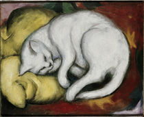 Franz Marc, Katze auf gelbem Kissen von AKG  Images