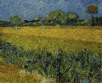 V.v.Gogh, Blick auf Arles mit Irisblueten von AKG  Images