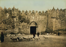 Jerusalem, Damaskustor / Photochrom by AKG  Images