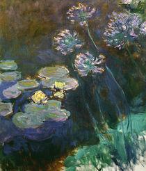 C.Monet, Seerosen und Agapanthus von AKG  Images