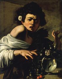 Caravaggio, Knabe von Eidechse gebissen by AKG  Images