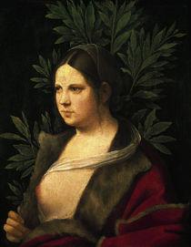 zu Petrarca, Laura, Gem.v.Giorgione von AKG  Images