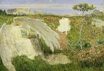 Segantini/Liebe Quelle Jugend/1896 von AKG  Images