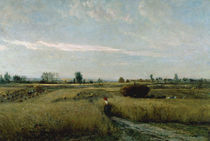 C.F.Daubigny, Moisson by AKG  Images
