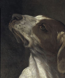 G.Reni, Hl.Rochus, Ausschn.: Hund by AKG  Images