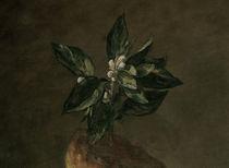 J.B.S.Chardin, Stilleben mit Brioche,Det by AKG  Images