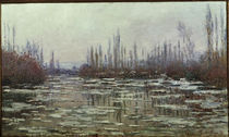 C.Monet, Eisbruch by AKG  Images
