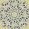 Craigfellows-winterwings