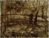 v.Gogh, Ecke im Garten der Heilanstalt by AKG  Images