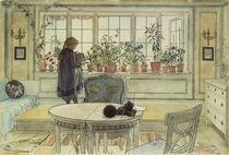 C.Larsson, Das Blumenfenster von AKG  Images