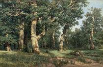 Schischkin, Eichenhain/ 1887 von AKG  Images