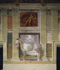 Giulio Romano, Pferd der Gonzaga von AKG  Images