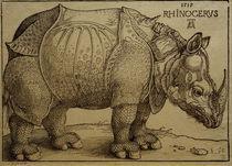 A.Duerer, Rhinozeros / Holzschnitt, 1515 by AKG  Images
