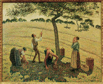 C.Pissarro, Die Apfelernte by AKG  Images