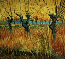 Van Gogh/Weiden bei Sonnenuntergang/1888 von AKG  Images