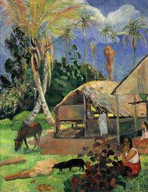 Paul Gauguin, Die schwarzen Schweine by AKG  Images