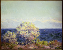 Monet/Cap D'Antibes im Mistral/1888 by AKG  Images