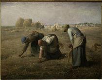 J.F.Millet, Die Aehrenleserinnen/ 1857 von AKG  Images