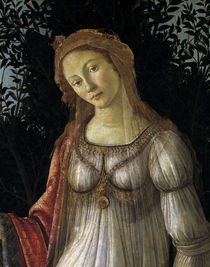 Botticelli, La Primavera, Kopf by AKG  Images