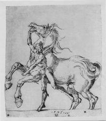 A.Duerer, Nackter Mann mit Pferd von AKG  Images
