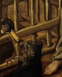 Tintoretto, Katze und Ente von AKG  Images
