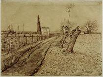 V.v.Gogh, Landschaft mit Weg u.Kopfweide von AKG  Images