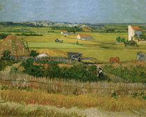 V.v.Gogh, Die Ernte von AKG  Images