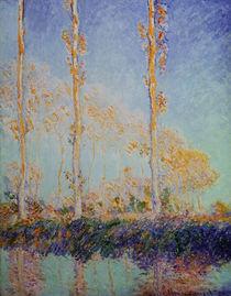 C.Monet, Die drei Pappeln von AKG  Images