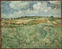V.van Gogh, Ebene bei Auvers mit Regenw. by AKG  Images