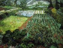 V.v.Gogh, Mohnfeld by AKG  Images