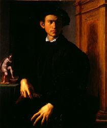 A.Bronzino, Junger Mann mit Laute von AKG  Images