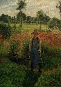 C.Pissarro, Der Gaertner,Nachmittagssonne by AKG  Images